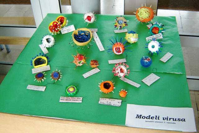 Ovo su modeli deoksiribonukleinske kiseline koje su učenici 7. r