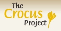 PROJEKT �AFRAN - THE CROCUS PROJECT